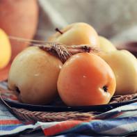 Фото моченых яблок 2