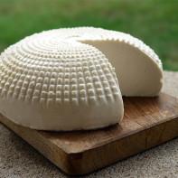 Фото адыгейского сыра 4