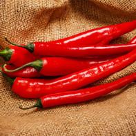 Фото острого красного перца