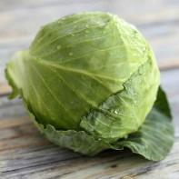 Фото белокочанной капусты 5