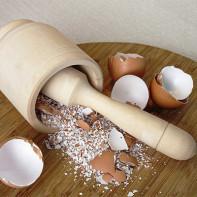 Фото яичной скорлупы 6