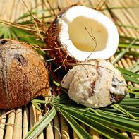 Фото кокоса