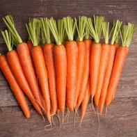 Фото моркови 5