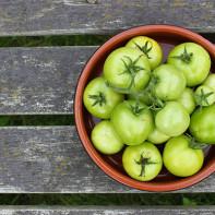 Фото зеленых помидоров 5