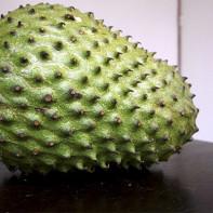 Фото фрукта гуанабана