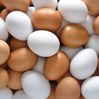Фото куриных яиц
