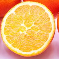 Фото апельсинов 2