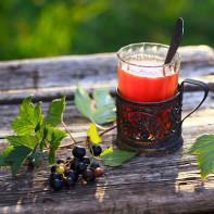 Фото чая из листьев смородины 4