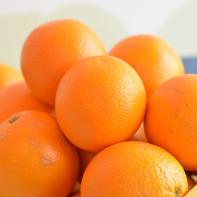 Фото апельсинов 5