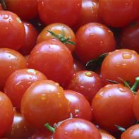 Фото томатов черри