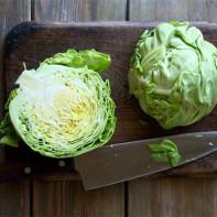 Фото белокочанной капусты 3