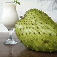 Фото фрукта гуанабана 5