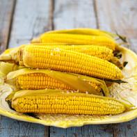 Фото сушеной кукурузы