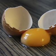 Фото куриных яиц 7
