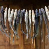 Фото сушеной и вяленой рыбы 4