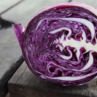 Фото краснокочанной капусты 4