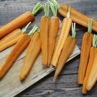 Фото моркови 6