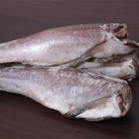 Фото рыбы хек
