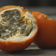 Фото фрукта гранадилла 2