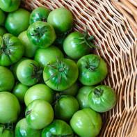 Фото зеленых помидоров 4