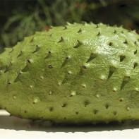 Фото фрукта гуанабана 4
