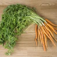 Фото морковной ботвы 3