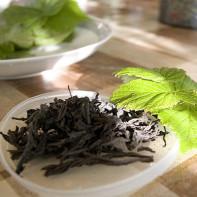 Фото чая из листьев смородины 5