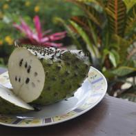 Фото фрукта гуанабана 3