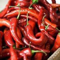 Фото острого красного перца 2