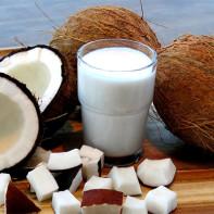 Фото кокоса 6