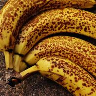 Фото бананов 5