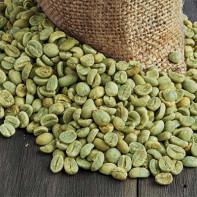 Фото зеленого кофе 3