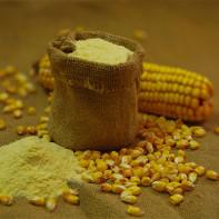 Фото кукурузной муки 3