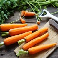 Фото моркови 3