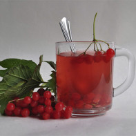 Фото калинового чая 4