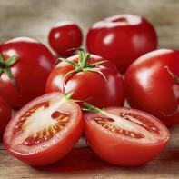 Фото томатов