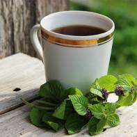 Фото мятного чая 4
