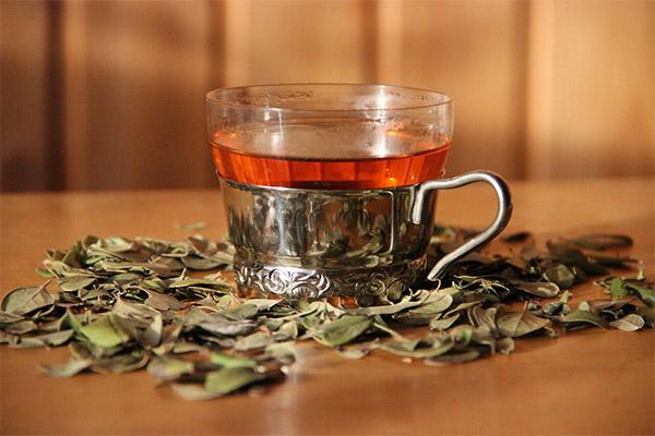 Чай с брусникой