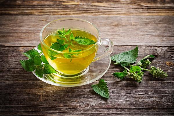 мелисса чай для беременных