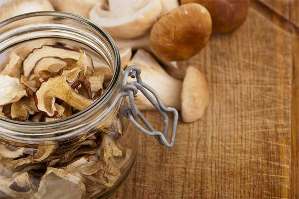 Как долго можно хранить сушеные грибы
