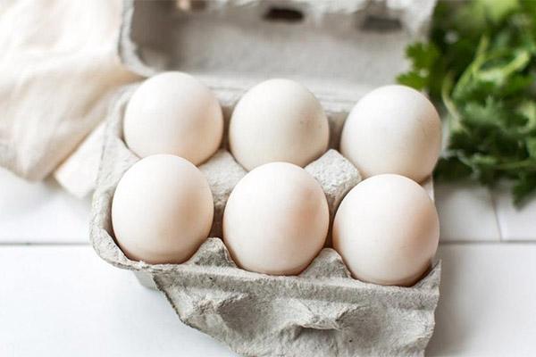 Как выбрать и хранить утиные яйца