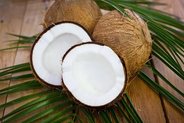 Как выбрать спелый кокос в магазине