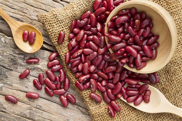 Полезные свойства красной фасоли