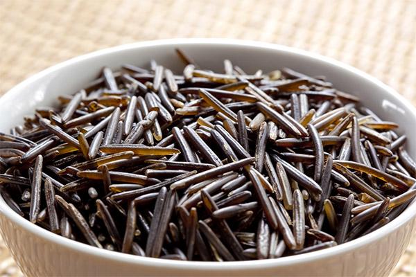 Польза и вред дикого риса