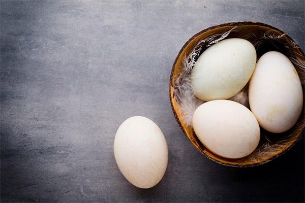 Польза и вред утиных яиц