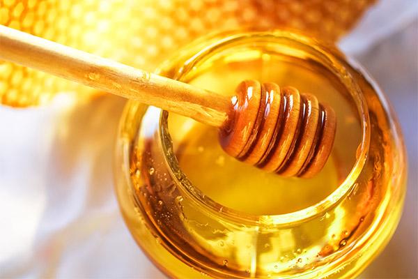 Применение меда в кулинарии