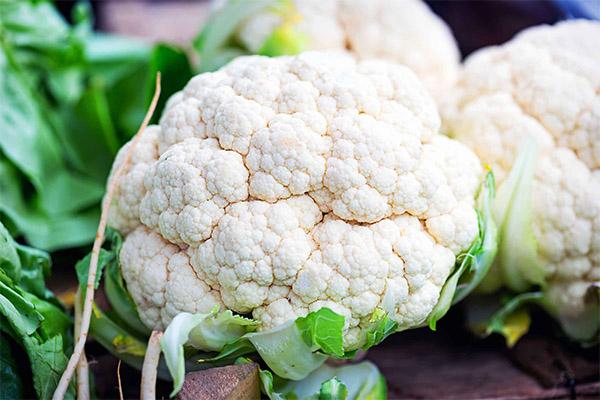 Рецепты народной медицины с цветной капустой