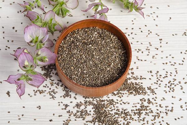 Семена чиа в медицине