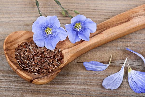 Семена льна в медицине