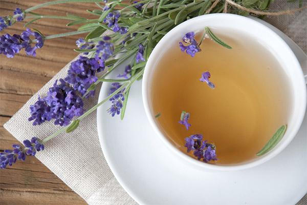 Чай с лавандой в медицине
